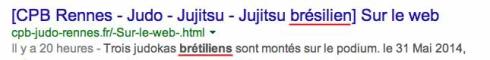 jutjitsu-bresilien-judoka-bretiliens